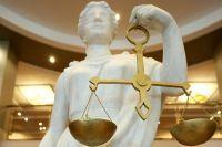 Представительство по устному ходатайству в гражданском процессевые вопросы